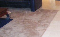 Reinigen van vloerkleed en karpet bij Chem-Dry Ramaker Hoogeveen